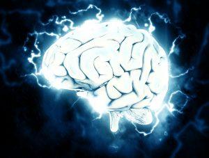 brain-1845962_1920-300x227