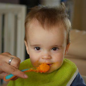 baby-food-1-300x300